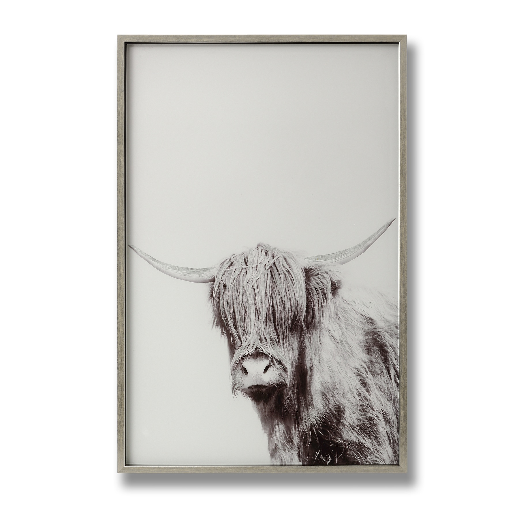 Highland Cow Left Facing Glass Image with Silver Frame - Image 1