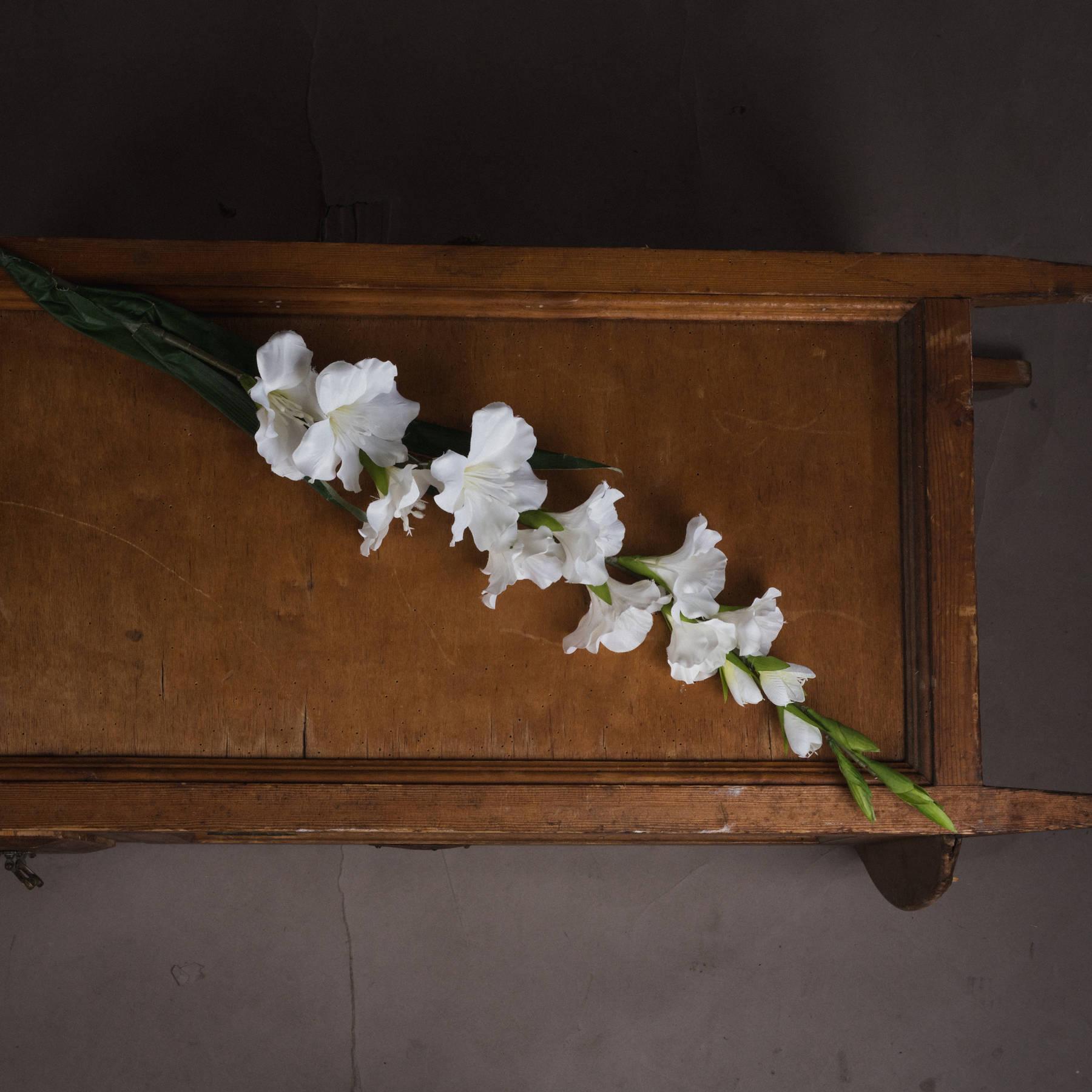 White Gladioli - Image 2
