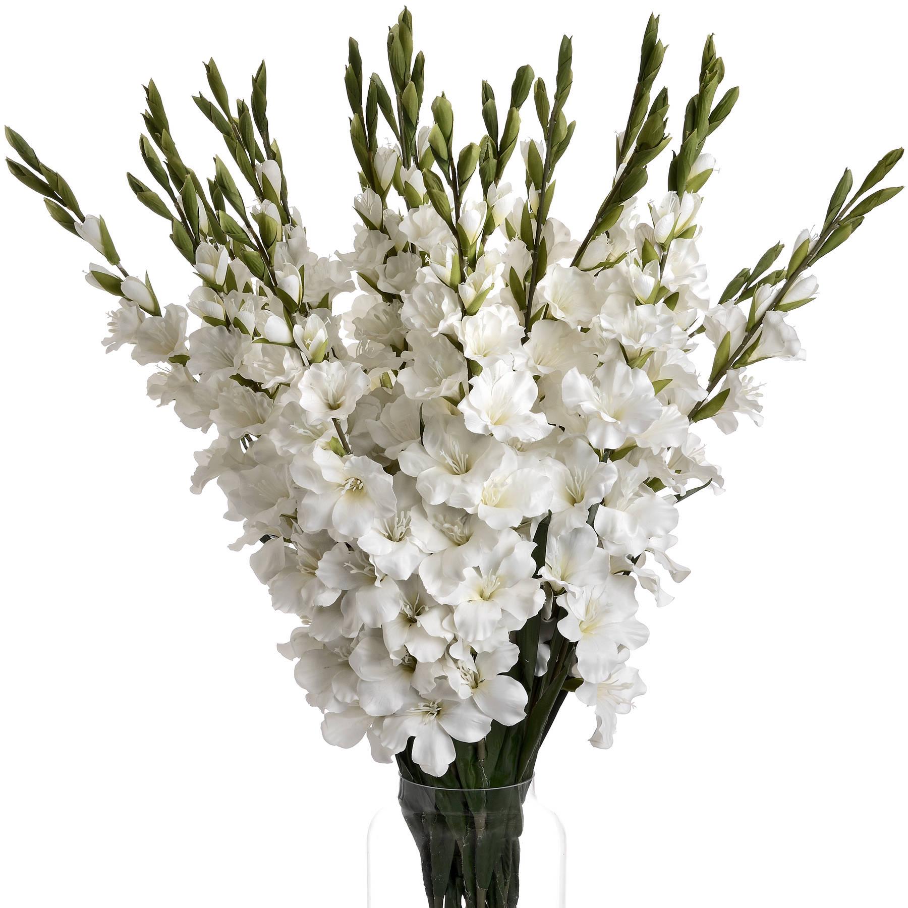 White Gladioli - Image 4