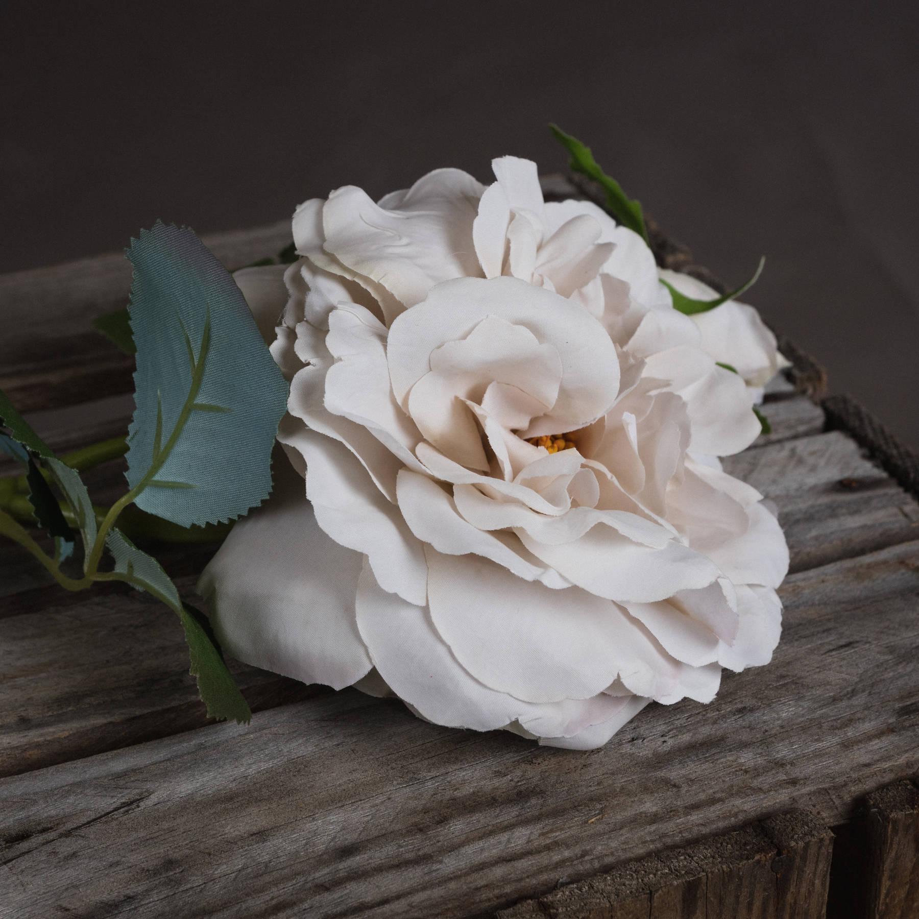 White Short Stem Rose - Image 3
