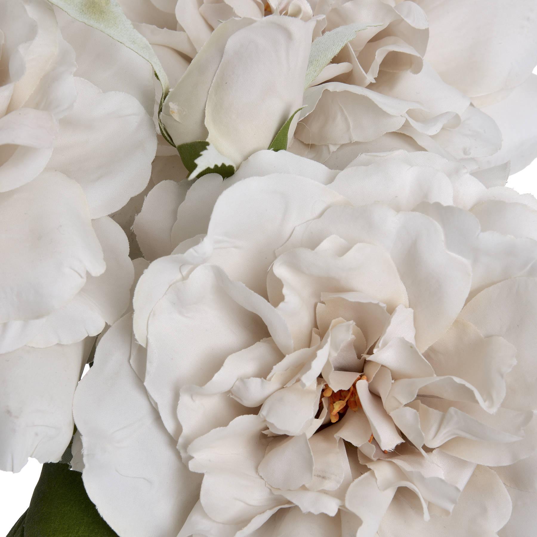 White Short Stem Rose - Image 5