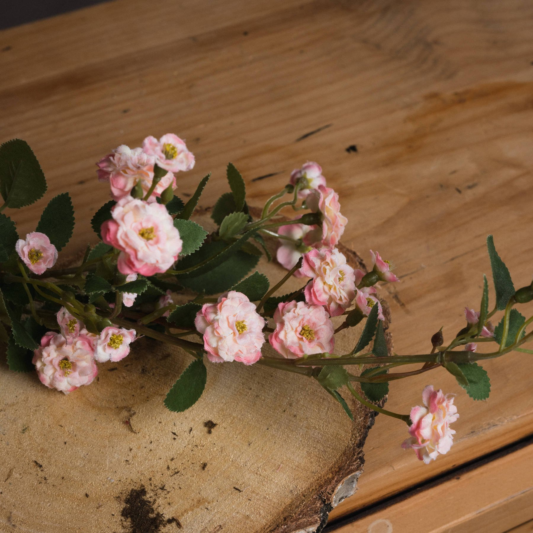 Pink Wild Meadow Rose - Image 3