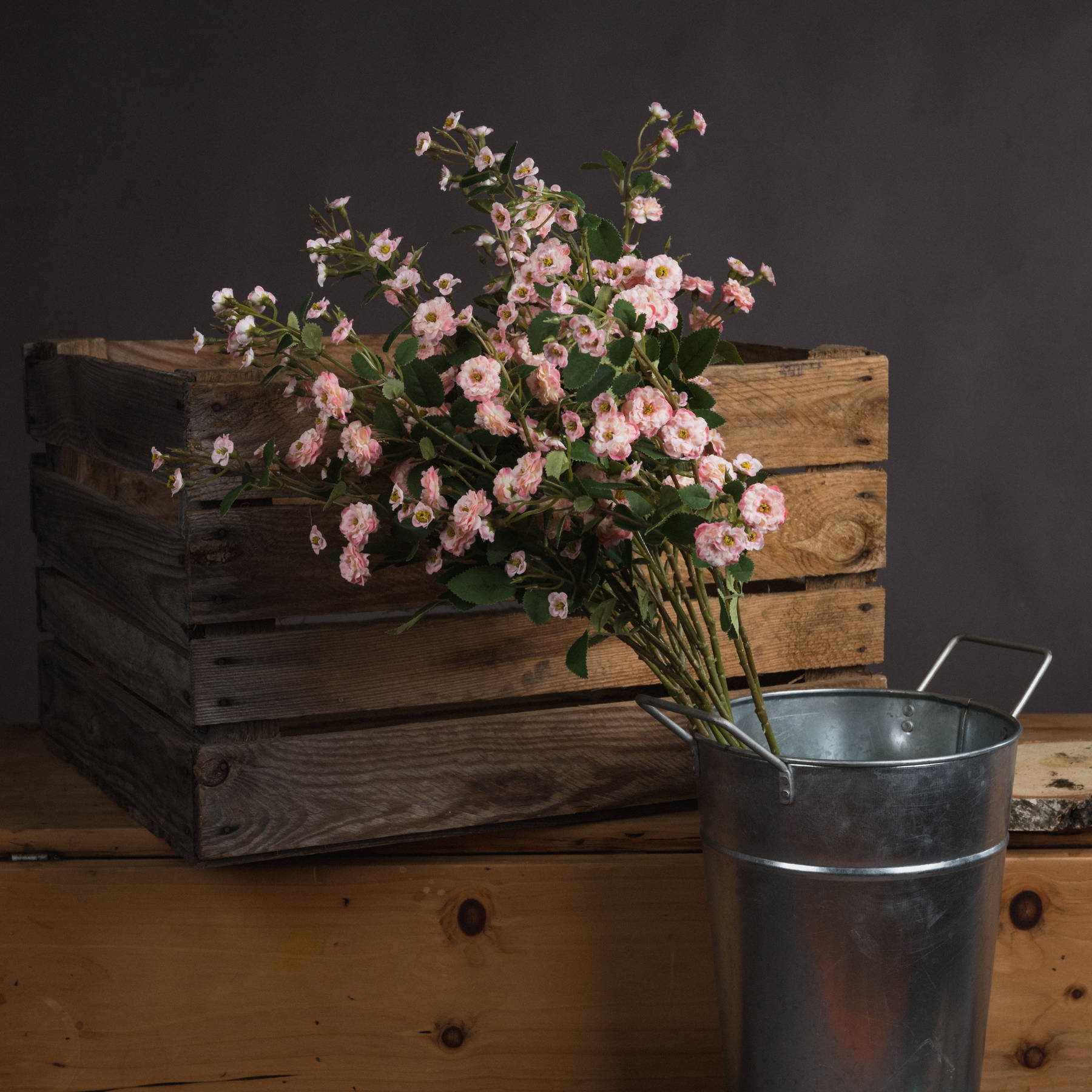 Pink Wild Meadow Rose - Image 1