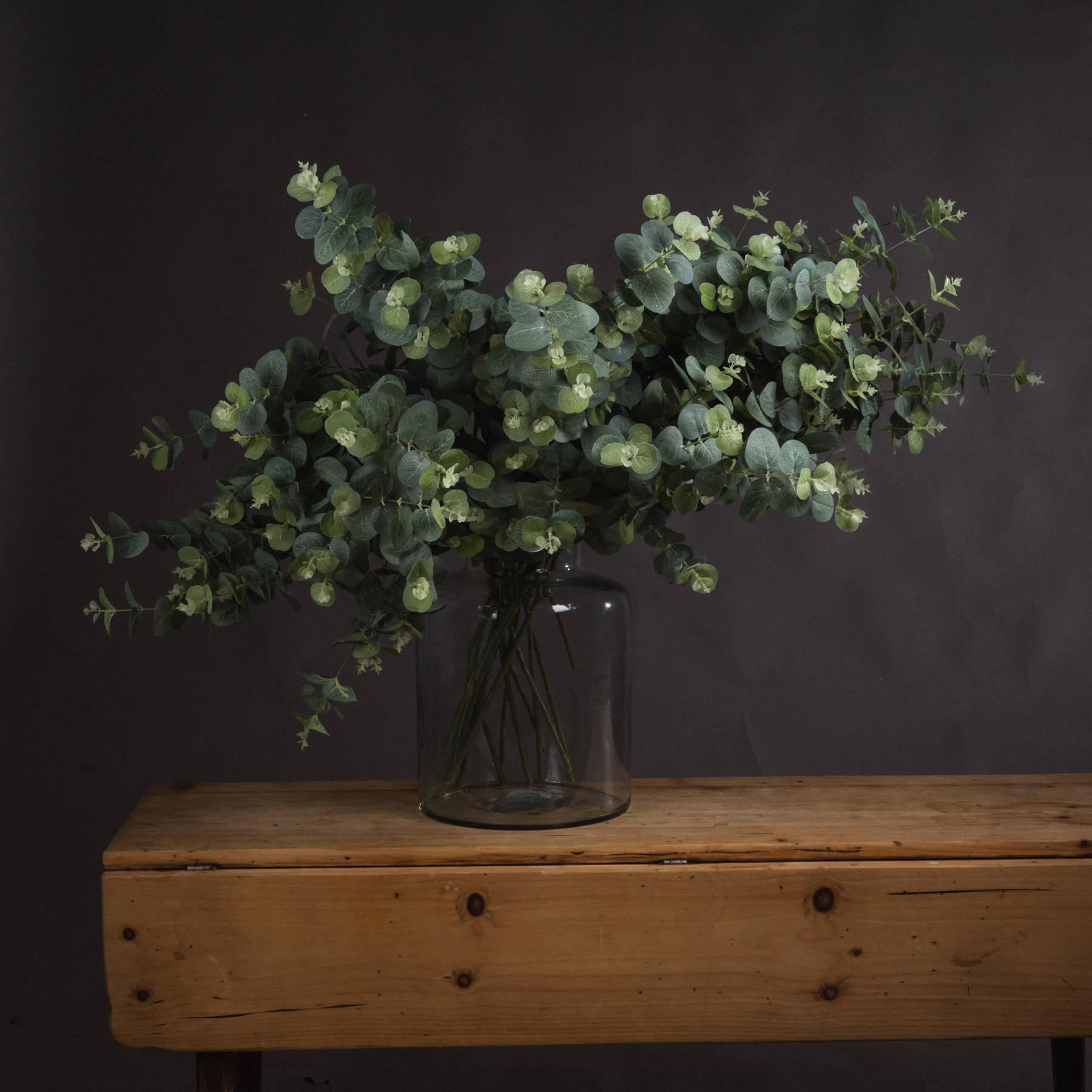 Eucalyptus Spray - Image 1