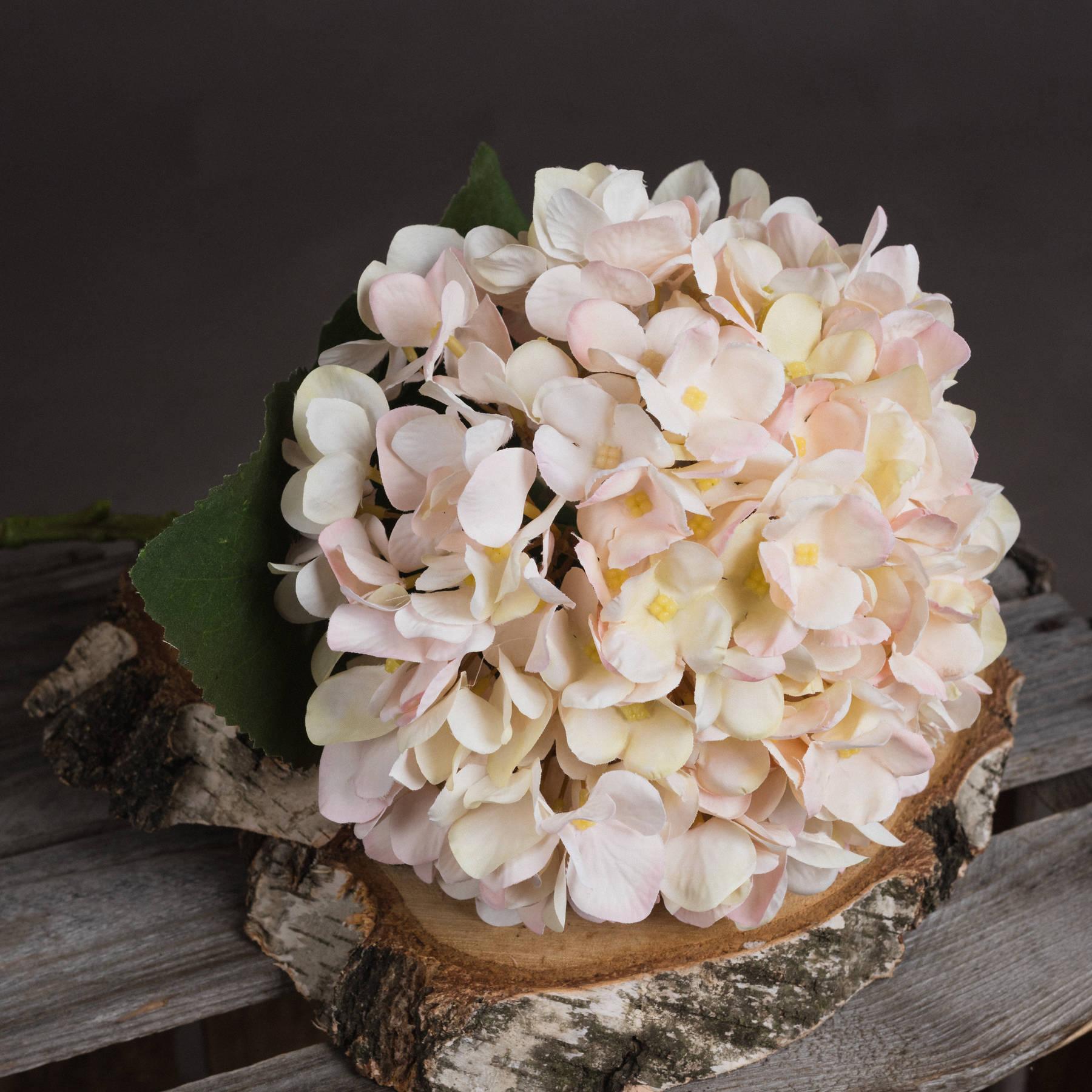 Autumn White Hydrangea - Image 3