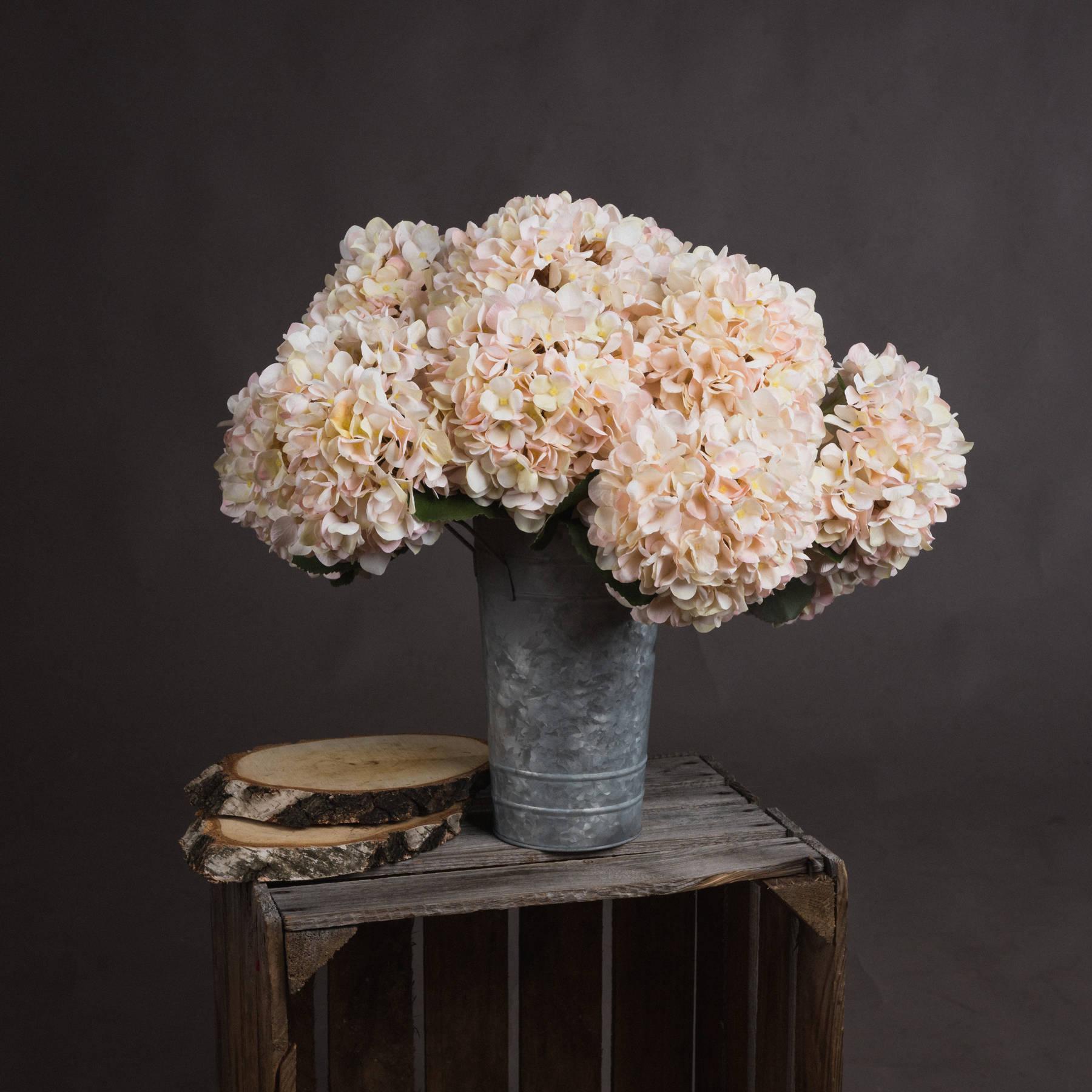 Autumn White Hydrangea - Image 1