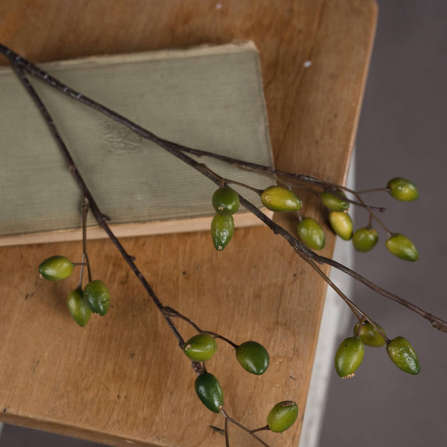 Olive Spray - Image 3