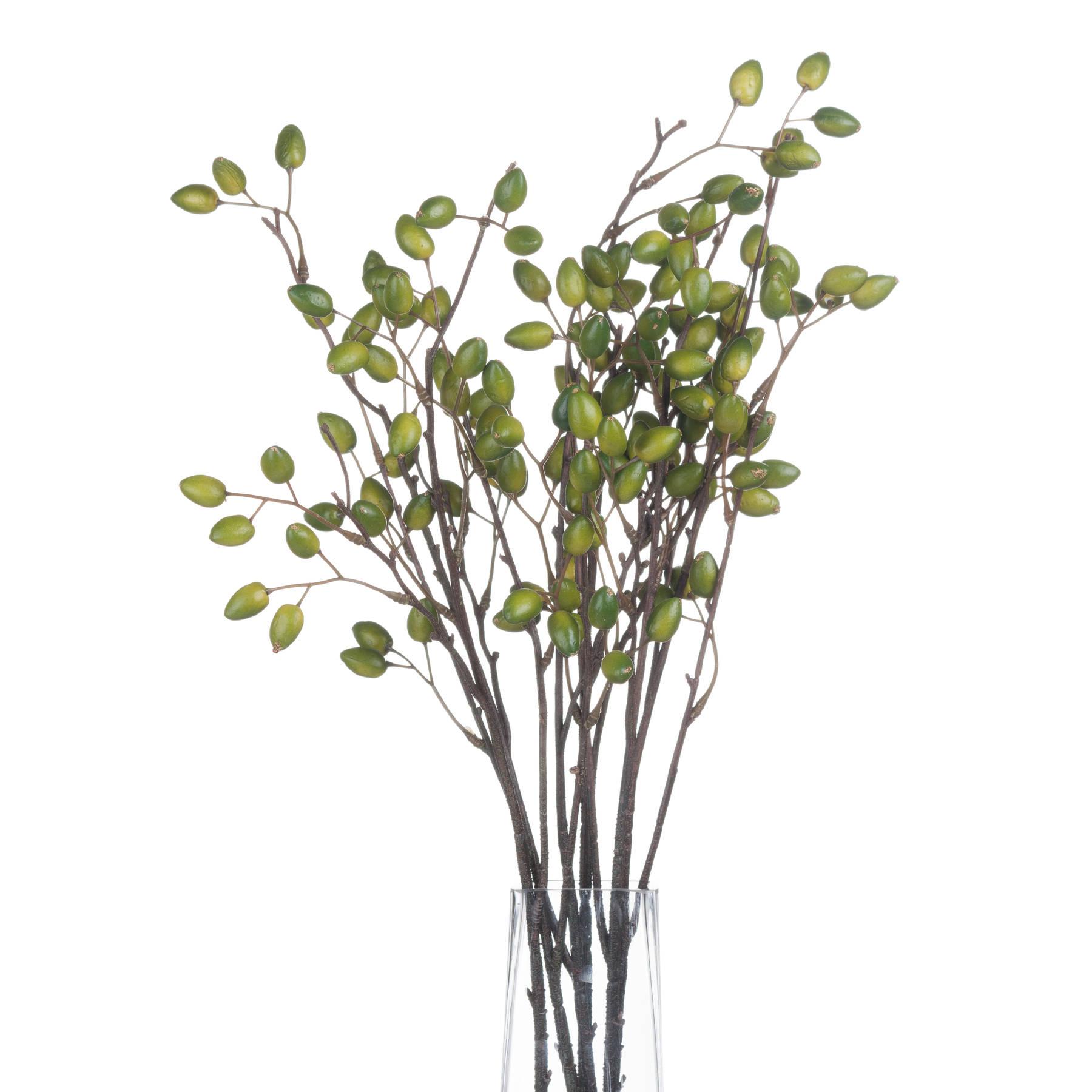 Olive Spray - Image 4
