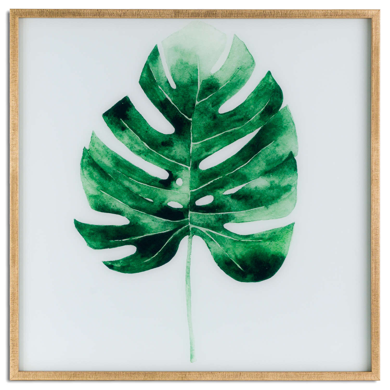 Cheese Plant Glass Image In Gold Frame - Image 1