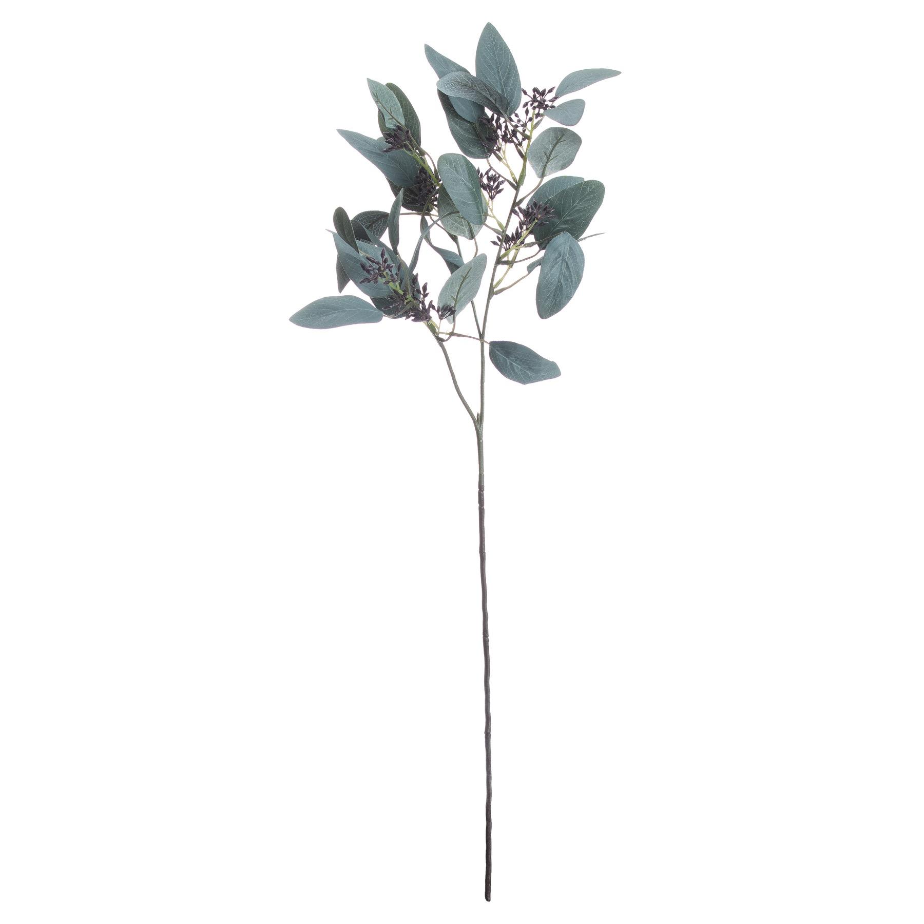 Seeded Eucalyptus Stem - Image 1