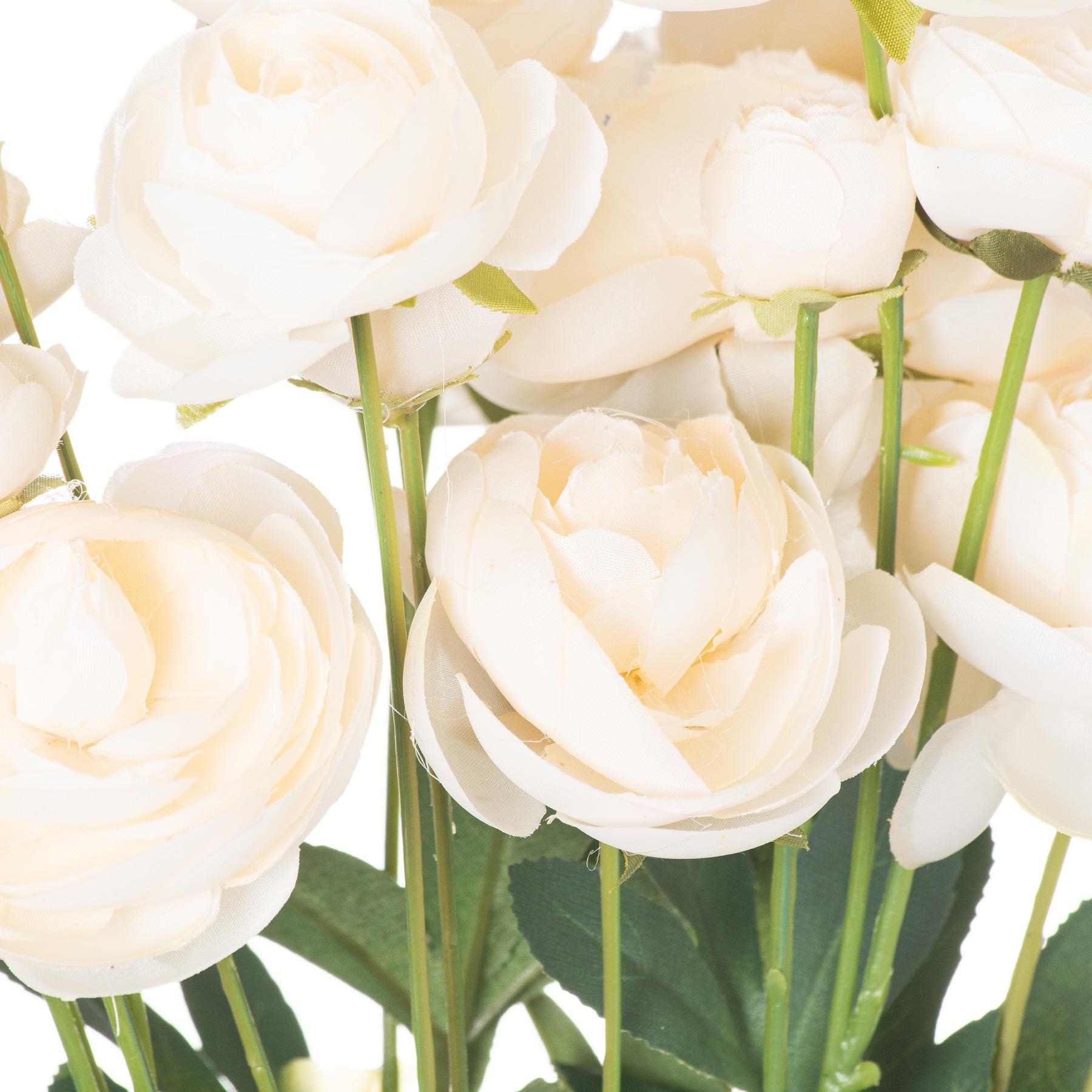 Cream Ranunculus - Image 2