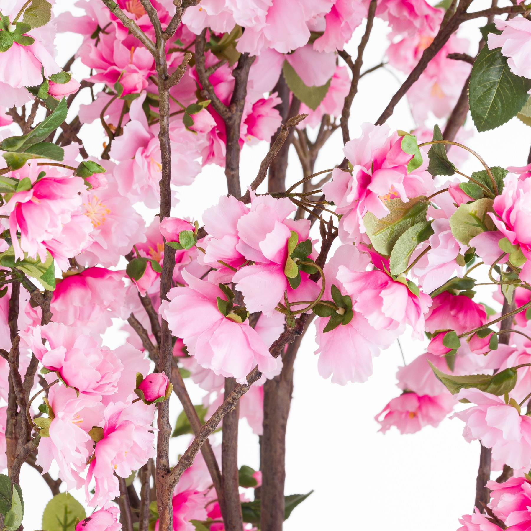 Large Cherry Blossom Tree - Image 2