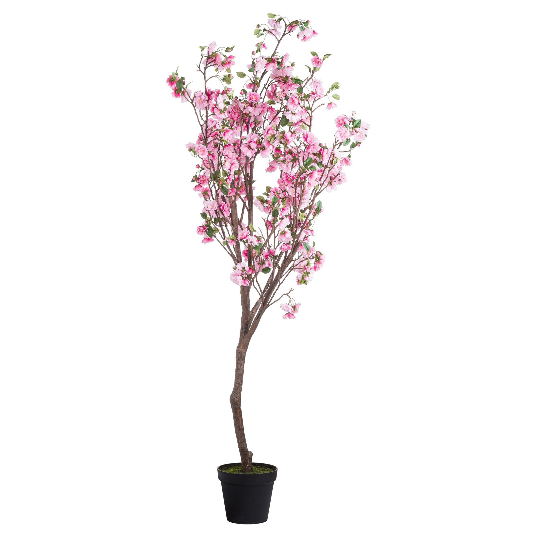 Large Cherry Blossom Tree - Image 1