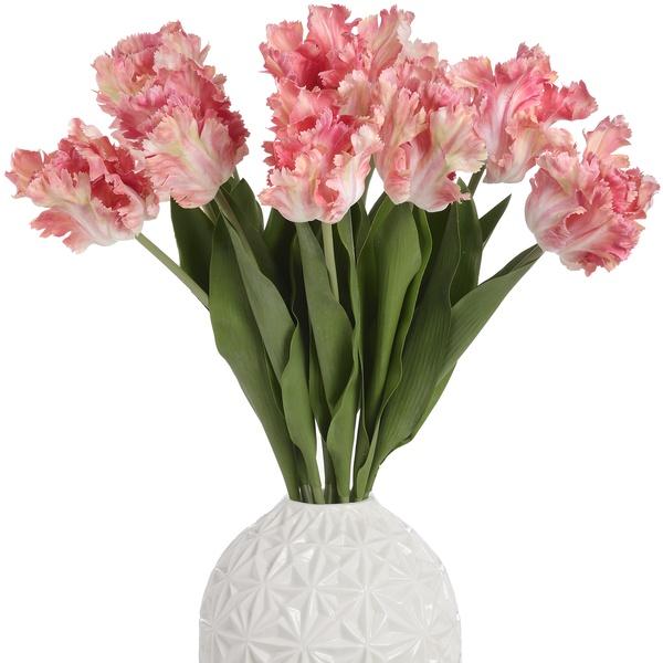 Coral Pink Parrot Tulip Stem