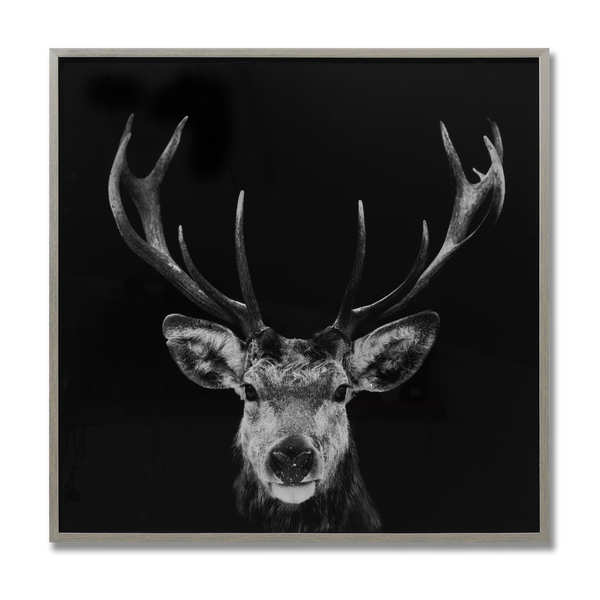 Dark Stag Glass Image with Silver Frame