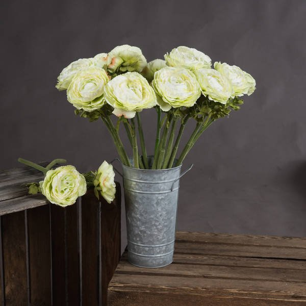 Green Single Ranunculus