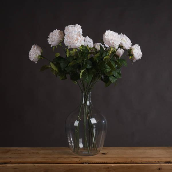 White Wedding Rose