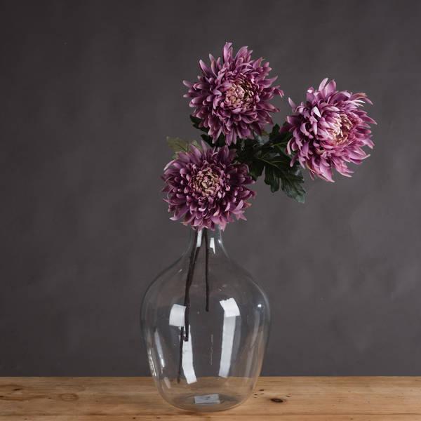 Large Purple Chrysanthamum