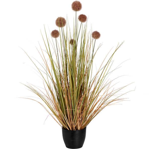 Pom Pom Grass Pot