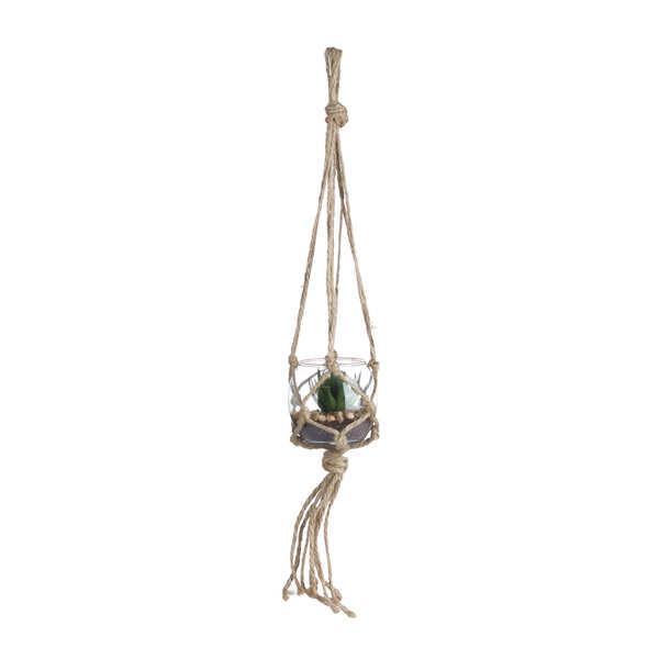 Macrami Hanging Succulent 1