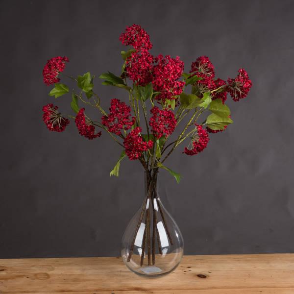 Red Autumnal Viburnum