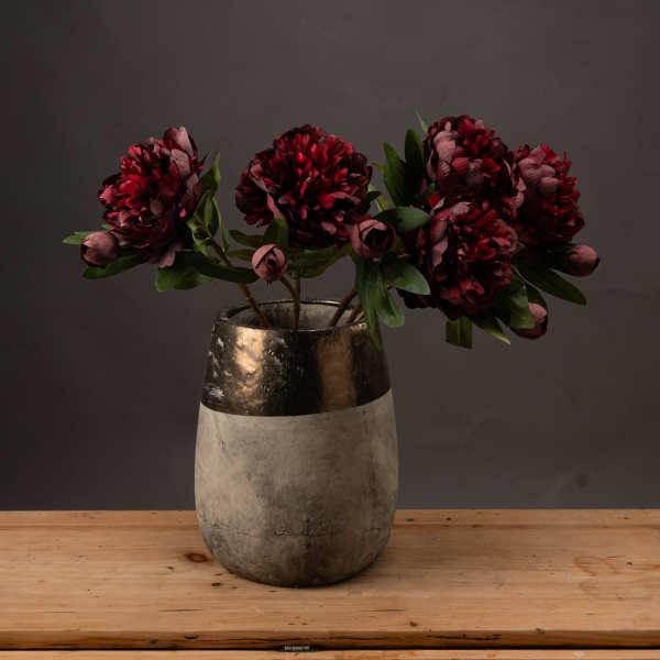 Burgundy Peony Rose