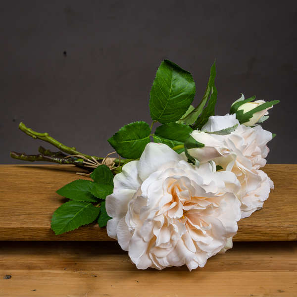 Peachy Cream Short Stem Rose Bouquet