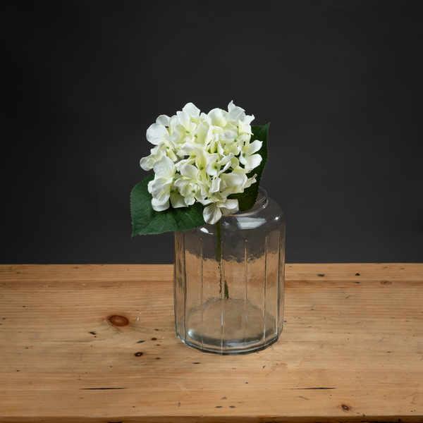 White Posy Hydrangea