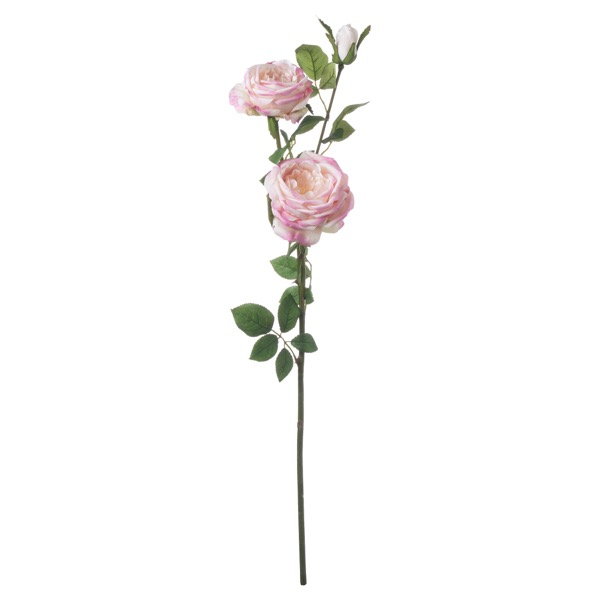 Pale Pink Garden Rose Spray