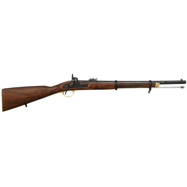 Enfield Rifle (1860)