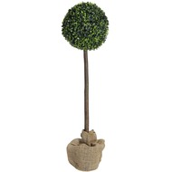 3ft  Boxwood  Tree  With  29cm  Diameter  Ball