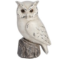 "7"" Owl (right)"