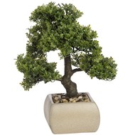 Bonsai tree in square ceramic pot - 34cm