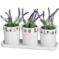 Set of 3 Garden Theme Flower Pots on Tray