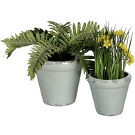 Set  Of  Two  Rustic  Pale  Green  Plant  Pots  (hom-558)