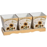 Sunflower set of three planters with tray