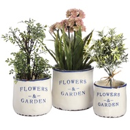 Set of three ceramic Flowers and Garden planters