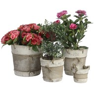 Set of four ceramic planters with rope handles