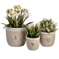 Set of three ceramic Fleur de Lys planters