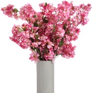 Pink Bougainvillea Spray Stem