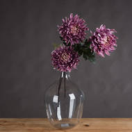 Large Purple Chrysanthamum