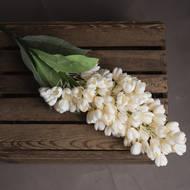 Cream Phoenix Flower