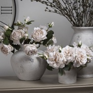 White Short Stem Rose - Thumb 7