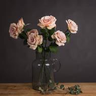 Pink Silk Garden Rose