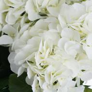 White Hydrangea Bouquet - Thumb 5