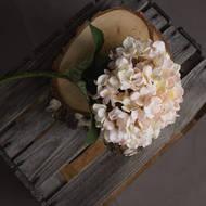 Autumn White Hydrangea - Thumb 2