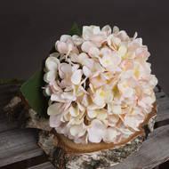 Autumn White Hydrangea - Thumb 3