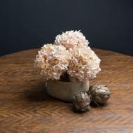 Autumn White Hydrangea - Thumb 7