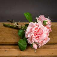 Champagne Short Stem Rose Bouquet