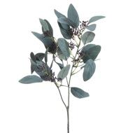 Seeded Eucalyptus Stem - Thumb 2